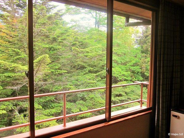 Hotel Iwaso Ryokan Terraza