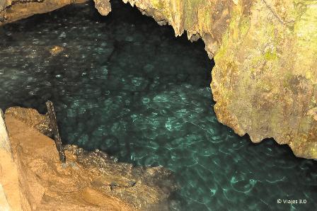 Excursión Buggy Cenote Cueva Taina Punta Cana